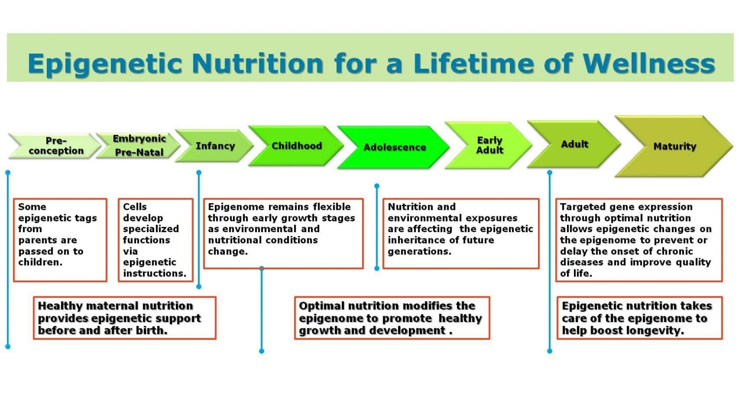 Epigenetic Nutrition for a Lifetime of Wellness Using Lunasin