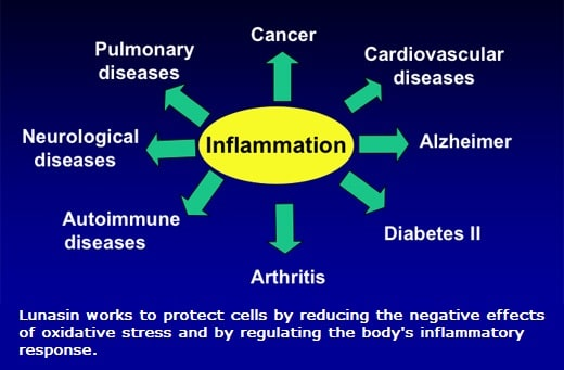 Lunasin reduces inflammation at the cellular level