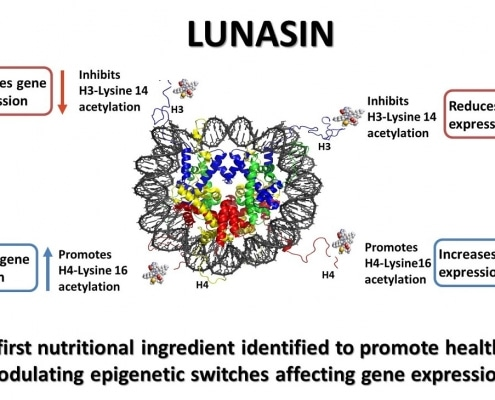 Lunasin and Epigenetic Switches