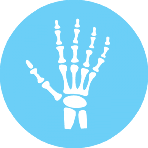 Bone, Joint & Muscle Support